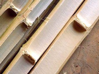Lamelles de bambou.