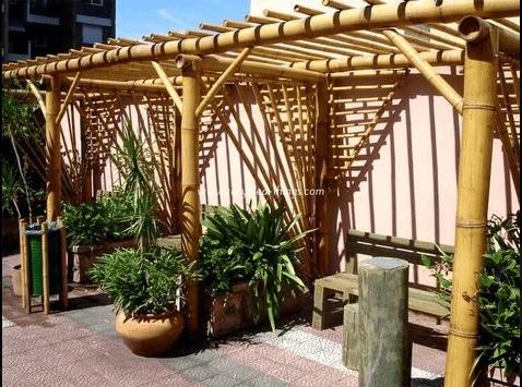 Pergola en bambou.